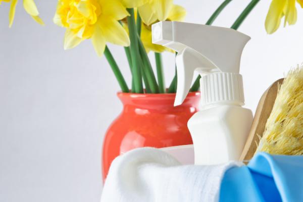 Spring clean spray